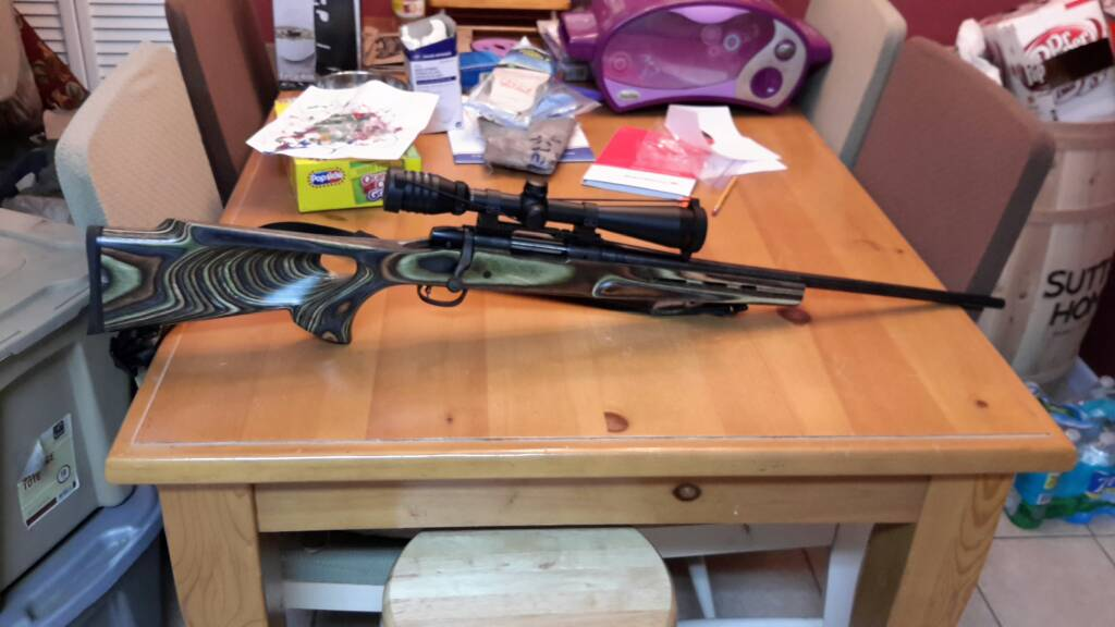 Looking for a new lightweight/compact .243 - General Rifle Discussion