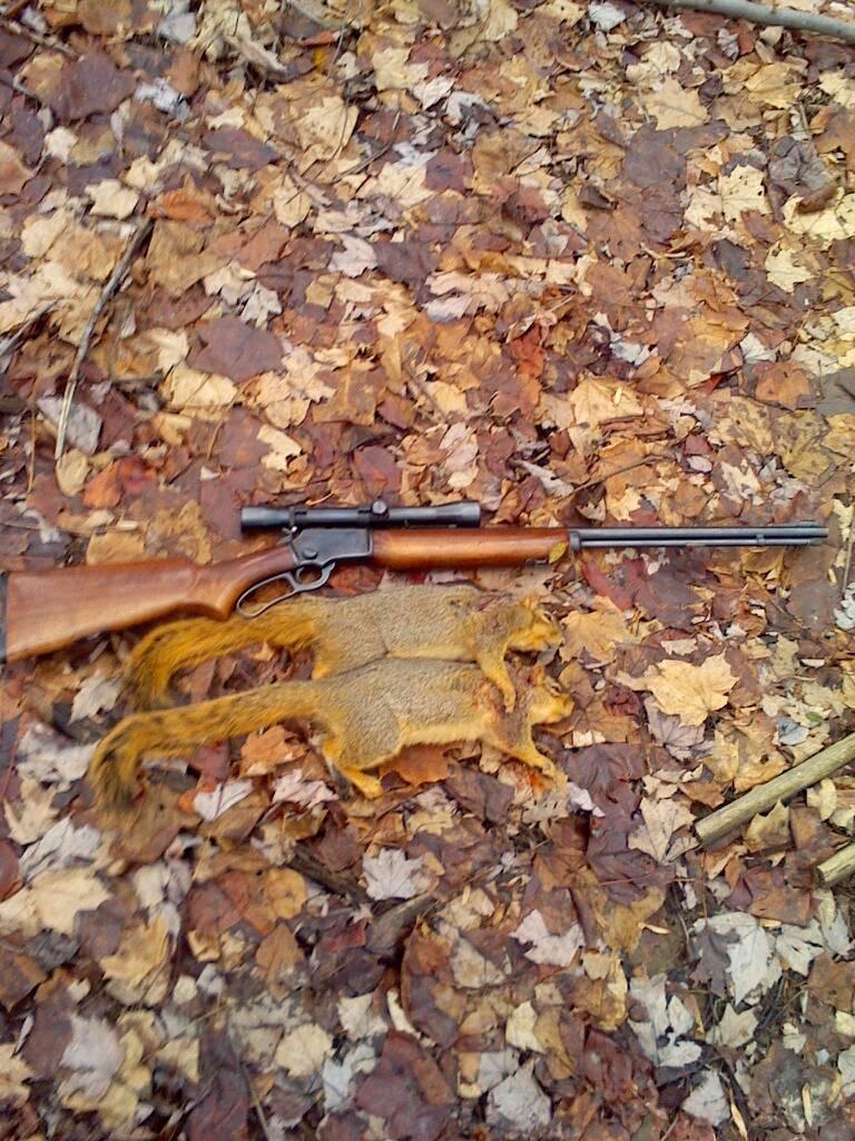 Any late season squirrel hunters ohio game fishing for Ohio fishing season