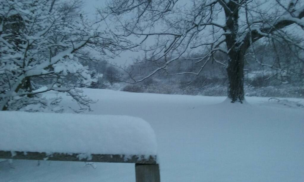 Lake effect residents how 39 s the snow ohio sportsman for How s the fishing